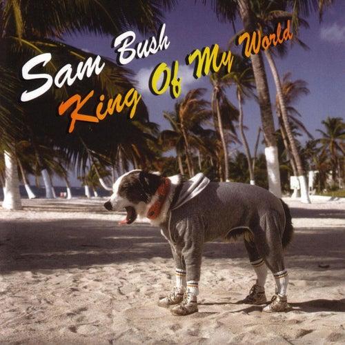 King Of My World by Sam Bush