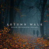 Autumn Walk: Mellow Instrumental Chillout by Various Artists