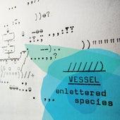 Enlettered Species by Vessel