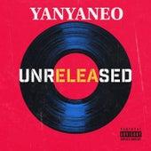 Yanyaneo de T-rier