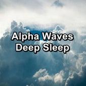 Alpha Waves Deep Sleep by White Noise Babies