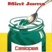 MINT JAMS(Live) de Casiopea