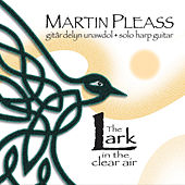 The Lark in the Clear Air by Martin Pleass