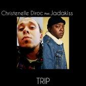 Trip by Christenelle Diroc