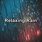 Relaxing Rain by Sounds Of Nature