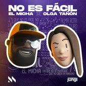 No Es Fácil (Remix) de El Micha
