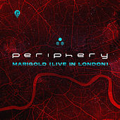 Marigold (Live in London) by Periphery