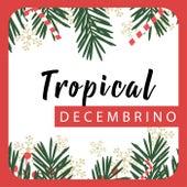 Tropical Decembrino de Various Artists
