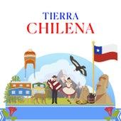 Tierra Chilena de Various Artists