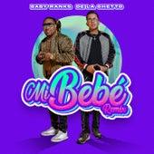Mi Bebe (Remix) fra Baby Ranks