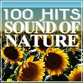 100 Hits Sound of Nature (Relaxing Music) by Various Artists