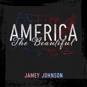 America the Beautiful de Jamey Johnson