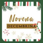 Novena Decembrina de Various Artists