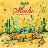 Mucho by Slim Desert Niños