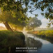 Gentle River Ambience by Brother Nature