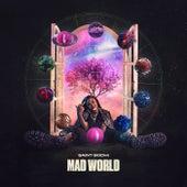 Mad World by Saint Bodhi