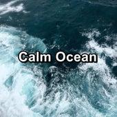 Calm Ocean von Yogamaster