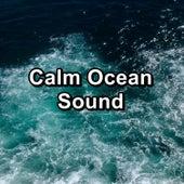 Calm Ocean Sound von Chakra