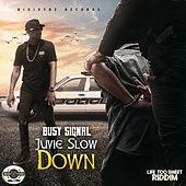 Juvie Slow Down von Busy Signal