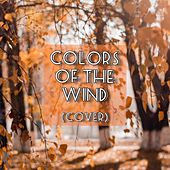 Colors of the Wind by Shohini Chakraborty