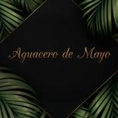 Aguacero de Mayo von Toto La Momposina