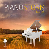 Piano Storm by David Selfe