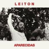 Aparecidas by Leiton