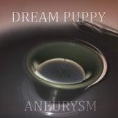 Aneurysm de Dream Puppy