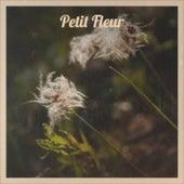 Petit Fleur van Various Artists