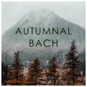 Autumnal Bach by Johann Sebastian Bach