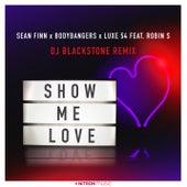 Show Me Love (DJ Blackstone Remix) by Sean Finn