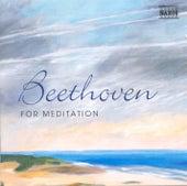 Beethoven For Meditation (Swedish Edition) di Various Artists