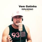Vem Gatinha (Cover) by Fernandinho De Lucca