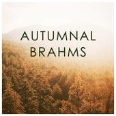 Autumnal Brahms von 新山恵理