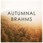 Autumnal Brahms by 新山恵理