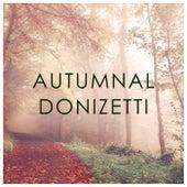 Autumnal Donizetti von Gaetano Donizetti