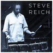 Steve Reich de Steve Reich Ensemble