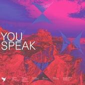 You Speak by Vineyard Worship