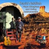 David Naiditch Plays Bluegrass and Swing Instrumentals von David Naiditch