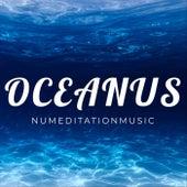 Oceanus von Nu Meditation Music
