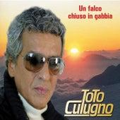 Un Falco Chiuso In Gabbia von Toto Cutugno
