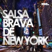 Salsa Brava de New York de Various Artists