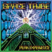 Peak Experience by Space Tribe