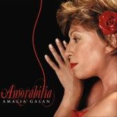 Amorabilia by Amalia Galán