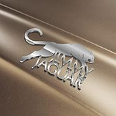 Jimmy Jaguar by Big Uncle Wayne