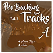 Pro Backing Tracks A, Vol.2 by Pop Music Workshop