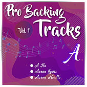 Pro Backing Tracks A, Vol 1 by Pop Music Workshop