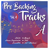 Pro Backing Tracks A, Vol.4 by Pop Music Workshop