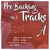 Pro Backing Tracks A, Vol.3 by Pop Music Workshop