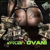 Dinero y Cueros (feat. Ovani) de Alberto Stylee